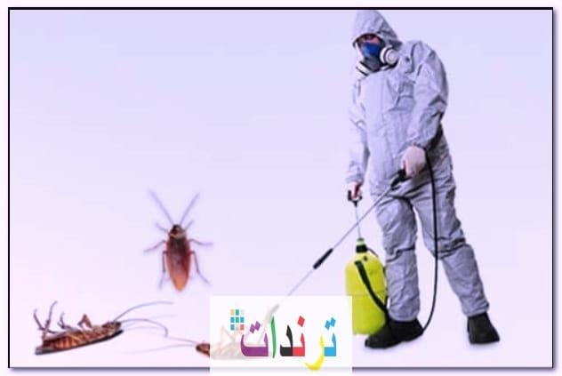 مكافحة وابادة الحشرات والقوارض